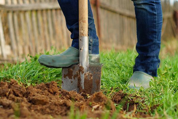 как выбрать лопату для огорода