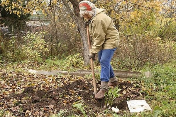 перекопка огорода