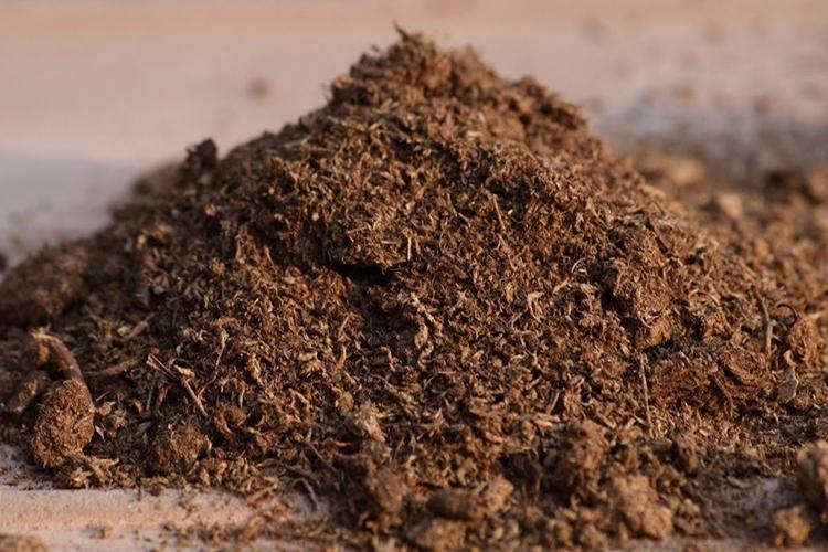 Торф в почву для боярышника