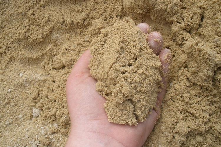 Песок в почву для боярышника