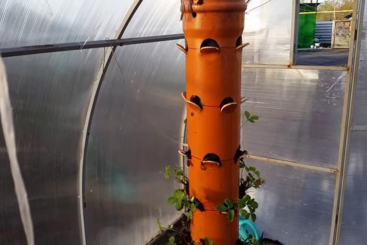 Изготовление вертикальной конструкции для посадки клубники в трубах ПВХ
