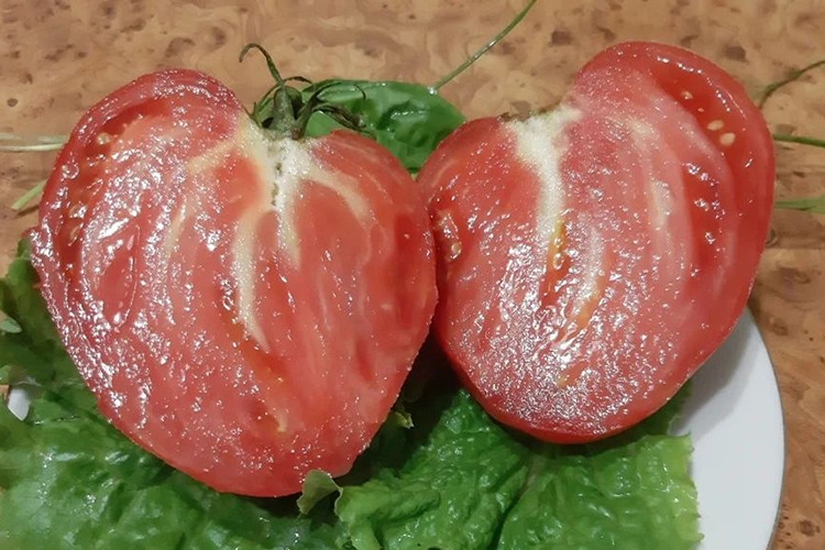 Плоды томата Бычье сердце