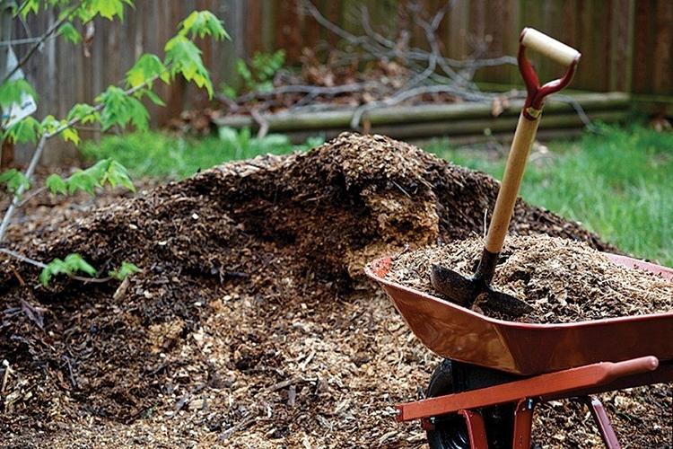 удобрение по весне органикой