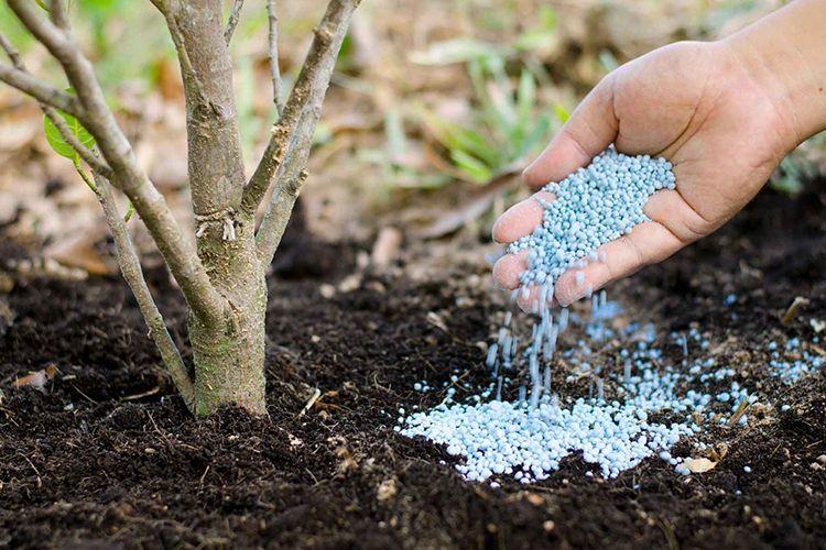 минеральные удобрения для сада, огорода, клумб
