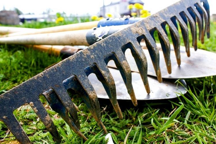 грабли лежат на лопате