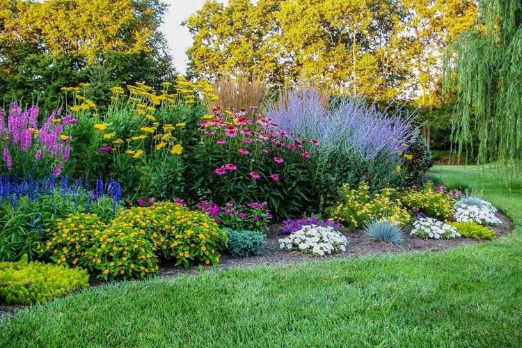 схемы для цветников непрерывного цветения