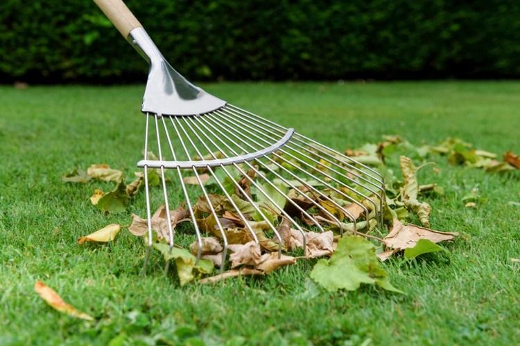веерный инструмент дял сада и двора