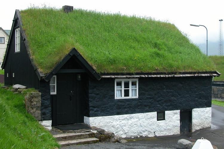 дом с газонной крышей