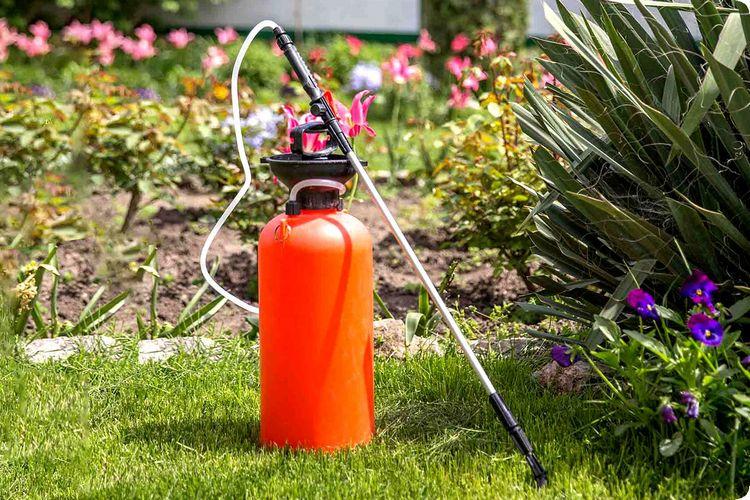 способы применения для защиты растений