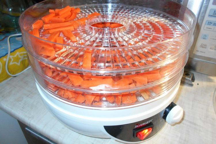 сушка моркови в электросушилке